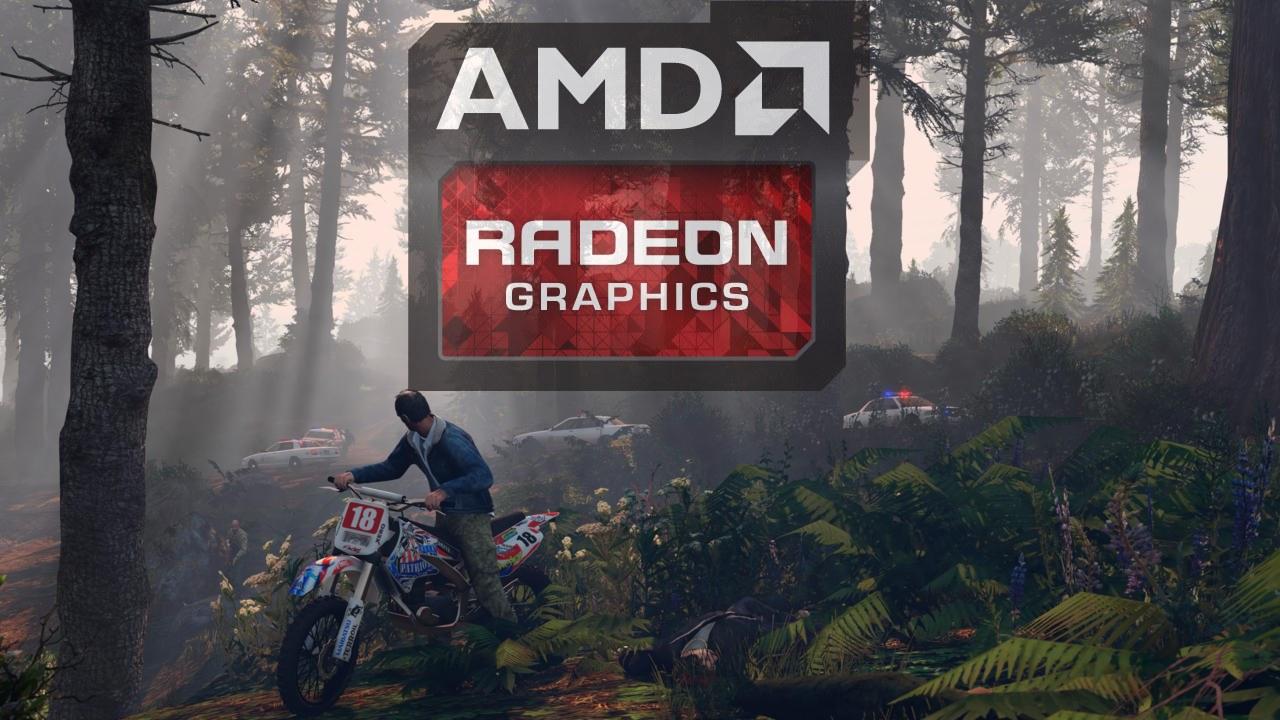 AMD Driver GTA V