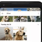 new Google Photos feature pemmzchannel